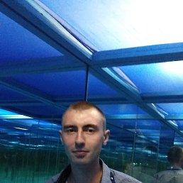 Андрей, 28 лет, Курья