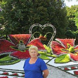 натали, 66 лет, Киев