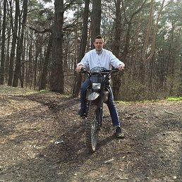 Феликс, 29 лет, Лыткарино