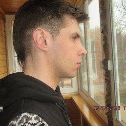 Лёха, 28 лет, Щекино