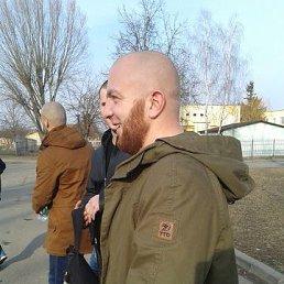 саня, 35 лет, Кобрин