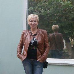 галина, 53 года, Боровичи
