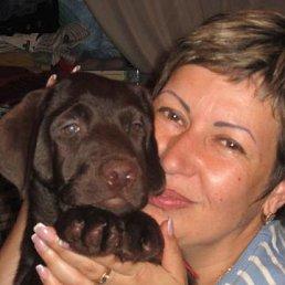 Елена, 50 лет, Украина