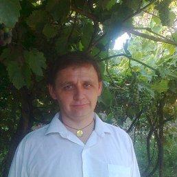 серожа, 49 лет, Красилов