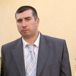 Александр, 44 года, Запрудня