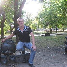Саша, 34 года, Седово