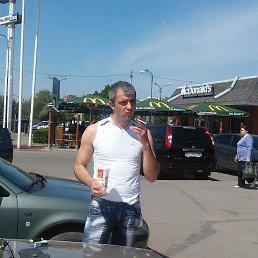 Иван, 33 года, Карловка