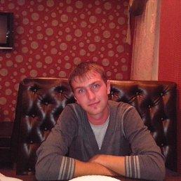 Илья, 29 лет, Заволжье