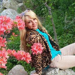 Фото Елена, Владивосток, 49 лет - добавлено 3 июня 2016