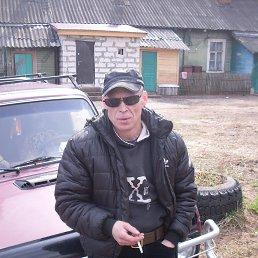 Владимир, 47 лет, Хвойная