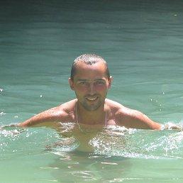 Борис, Санкт-Петербург, 43 года