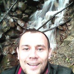 АНДРЕЙ, 38 лет, Анастасиевская