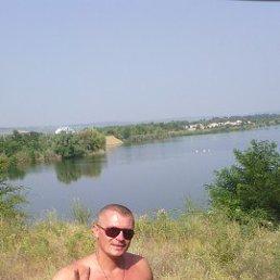 СЕРГЕЙ, 36 лет, Баштанка