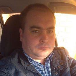 александр, 37 лет, Королев