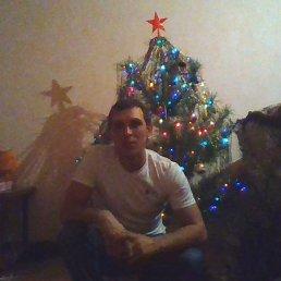 Александр, 40 лет, Кемля