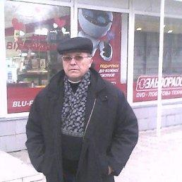анатолий, 63 года, Котовск