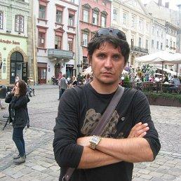 Федор, 43 года, Пологи