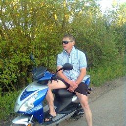 Евгений, 29 лет, Сольцы