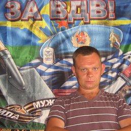 Александр, 28 лет, Кимовск