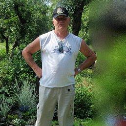 Станіслав, 64 года, Калуш