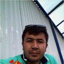 Юсуф, 29 лет, Пущино