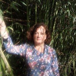 Antonina, 53 года, Абинск