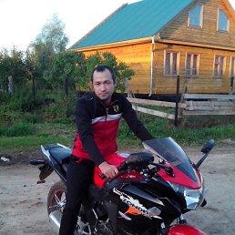 Иван, 41 год, Помары