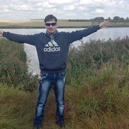 Денис, 24 года, Донской