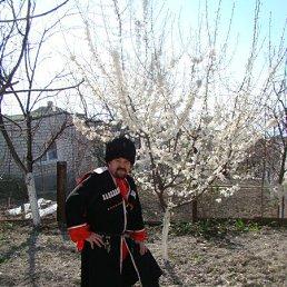 Андрей, 53 года, Ялта