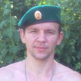 саша, 39 лет, Донское