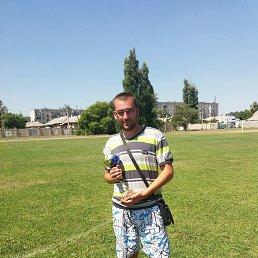 Александр, 27 лет, Белицкое