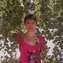 Татьяна, 43 года, Луховицы