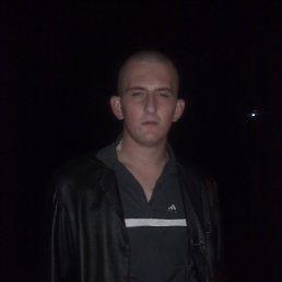 Максим, 24 года, Александро-Невский