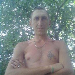 РОМА, 36 лет, Звенигородка