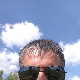 Алексей, 30 лет, Иваново