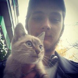 Алексей, 27 лет, Никольск