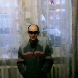 Денис, 29 лет, Чистополь