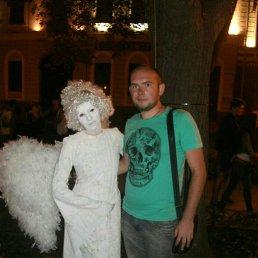 Андрей, 28 лет, Зерноград