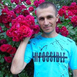 Александр, 42 года, Карловка