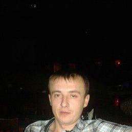 Виктор, 28 лет, Сургут