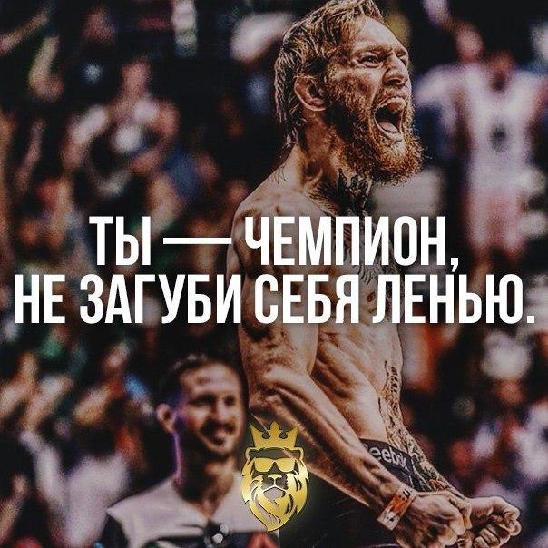 Чемпион по жизни картинки