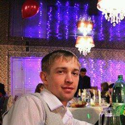 Андрей, 28 лет, Новобелокатай
