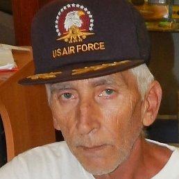 Владимир, 67 лет, Пологи