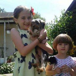 вероніка, 18 лет, Виноградов