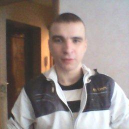 Дмитрий, 27 лет, Арзамас