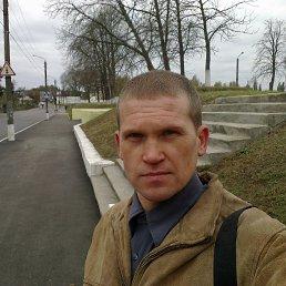 sergey, 42 года, Кролевец