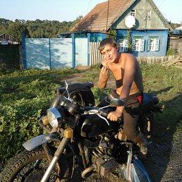 Евлампий, 29 лет, Купянск