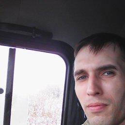 аркадий, 28 лет, Пономаревка
