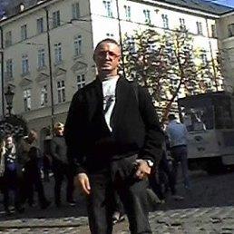 Гріша, 48 лет, Сокаль