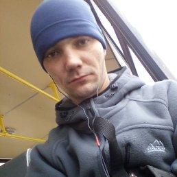 Антон, 28 лет, Куса